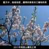 eces96127發現台灣之美
