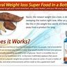 Weight Gain Power Full