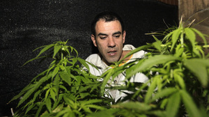 Uruguay's Drugs Policy: Regulating Market For Pot - NPR | News from the Spanish-speaking World | Scoop.it