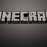 Minecraft Gamers