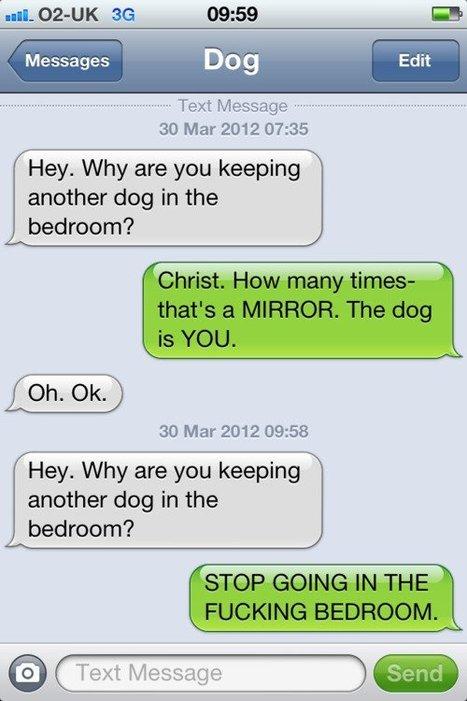 Text from dog   Tumblr.com   au cul du c@mion   Scoop.it