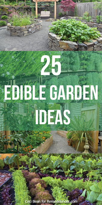 Remodelaholic   25 Edible Garden Ideas   Garden Ideas by Team Pendley   Scoop.it