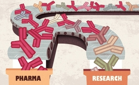 Reproducibility: Standardize antibodies used in research | Pharmaceutics_R&D | Scoop.it