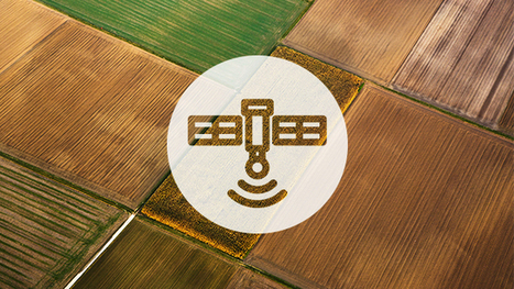 How Satellite Technology Is Predicting Crop Yields: Q&A with Thomson Reuters | OpenMarkets | Remote Sensing News | Scoop.it