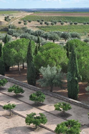 A Day in Alentejo, Portugal in Photos | Route des vins | Scoop.it