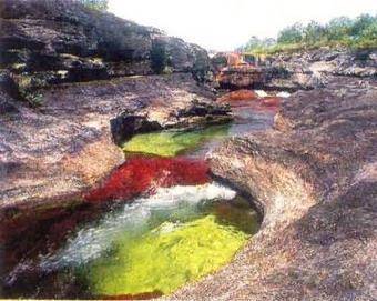 ALLPE Medio Ambiente Blog Medioambiente.org : El río de los cinco colores | Hermético diario | Scoop.it