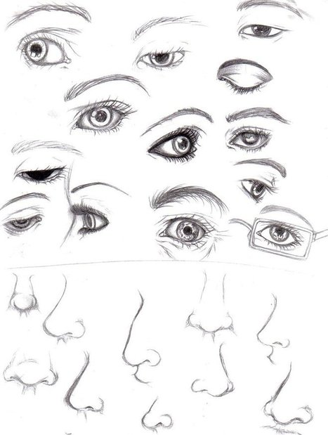 Line Drawing Nose : Nose reference in drawing references and resources