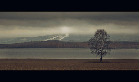 Cinematic photography inspiration by Mikki | The D-Photo | Interesting Photography | Scoop.it