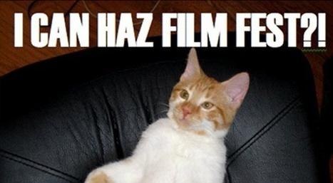 Une soirée au premier festival de vidéos de LOLcats | Slate - 2012 | Art en Réseau | Scoop.it