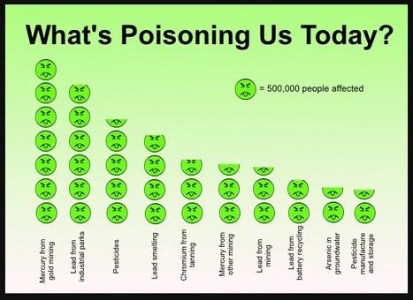 Infographic: The top toxic health hazards | green infographics | Scoop.it