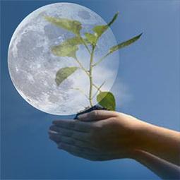 Farmers' Almanac Gardening Calendar | Totalmente Natura | Scoop.it