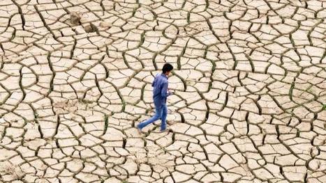 Climat : les ONG dénoncent le manque d'avancées à Lima | # Uzac chien  indigné | Scoop.it