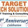 sapsd online training