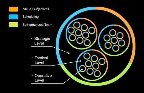 Holacracy – Large corporations reorganizing to eliminate bureaucracy | Innovation and Creativity | Scoop.it