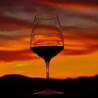 Wine, Sustainability and Social Media