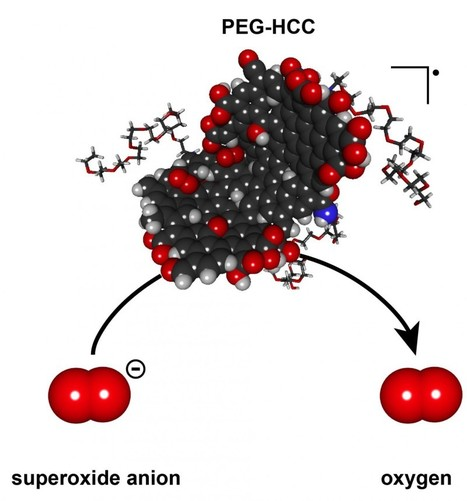 Nano-antioxidants prove their potential | Science technology and reaserch | Scoop.it