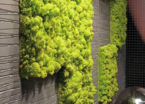Create an Interior Vertical Garden With Moss Tiles   Urban Gardens  ... - StumbleUpon   Cultivos Hidropónicos   Scoop.it