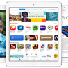 Apple iPad Air Contracts