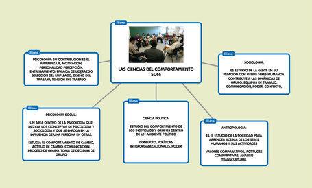 LAS CIENCIAS DEL COMPORTAMIENTO SON: | TEMA 1-C...