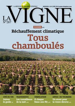 Entreprises / gens du vin : La WineTech est née, collectif de 20 start-ups du vin | Vin 2.0 | Scoop.it