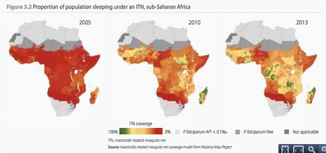 WHO: Malaria deaths halved since 2000 in quest for total eradication | Amazing Science | Scoop.it