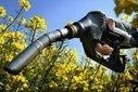 La production de biocarburants: une menace écologique? | Open source car | Scoop.it