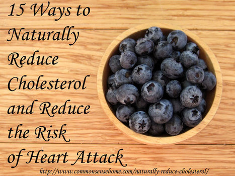 15 Ways to Naturally Reduce Cholesterol and Reduce the Risk of Heart Attack   Nutrition Science   Scoop.it