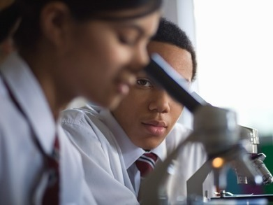 Why Curiosity Enhances Learning | Research skills | Scoop.it