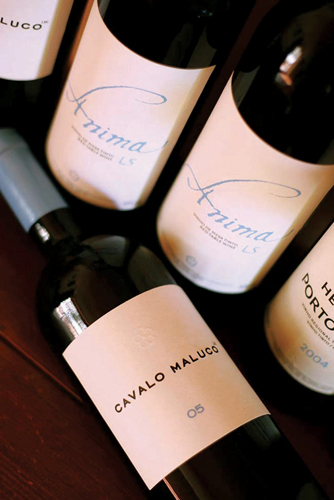 Wine Concept, Alacer do Sal Portugal | Wine Liquid Lisbon | Scoop.it