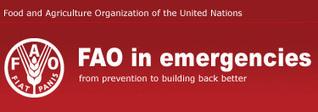 Crop damages map: FAO in Emergencies   maps   Scoop.it
