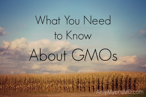 What You Need to Know About GMOs - Amy Myers MD | Health and Nutrition | Scoop.it