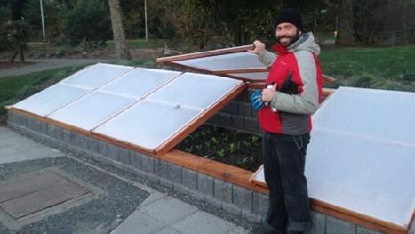 Spring gardening tips: plant those cool-season veggies now | Gardening | Scoop.it