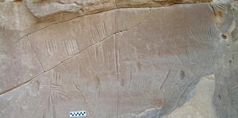 Ancient Spider Rock Art Sparks Archaeological Mystery | Aladin-Fazel | Scoop.it