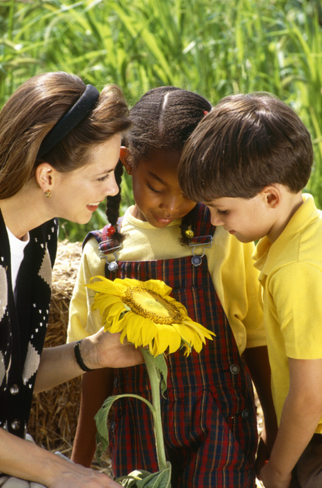 School Garden Lesson Plan- Growing Garden Companions  | School Gardening Resources | Scoop.it