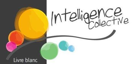 LIVRE BLANC N° 2 SUR L'INTELLIGENCE COLLECTIVE (orientée bienveillance) - Coaching d'intelligence collective | Société 2.0 | Scoop.it