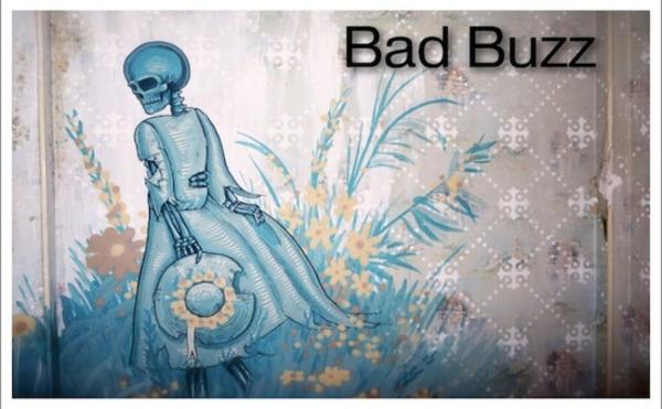 10 points clés permettant d'identifier un début de bad buzz | Bad buzz | Scoop.it