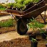 Hållbar utveckling 2013