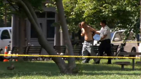 Alcohol-drinking shirtless gunman arrested near White House 'was only going to fire a couple of shots' | Daily Crew | Scoop.it