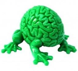 10 Good Reasons Not to Trust Your Brain   Enterpreneurs   Scoop.it