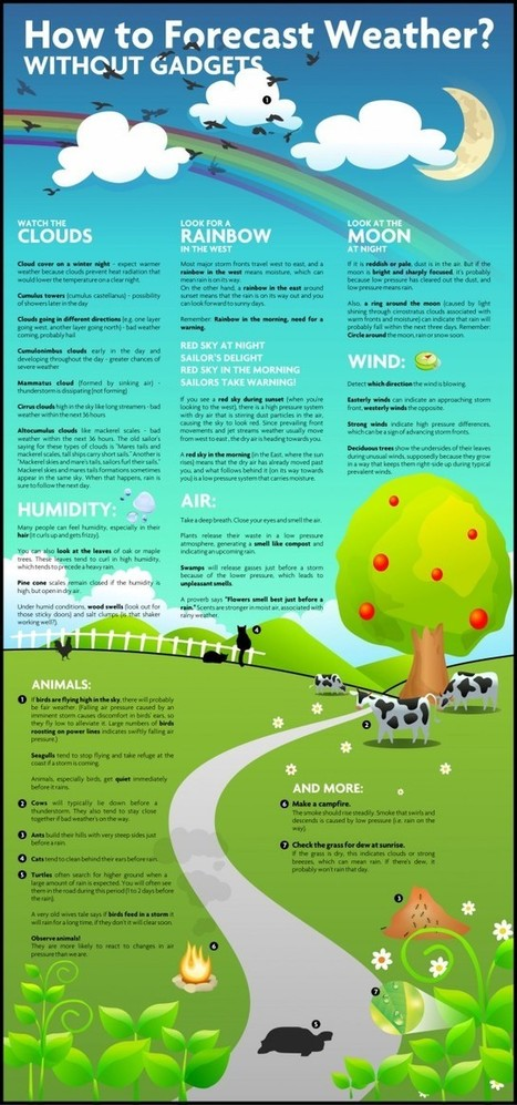 How to Forecast Weather Without Gadgets [infographic] | Daily Infographic | Data Visualization for Social Media | Scoop.it
