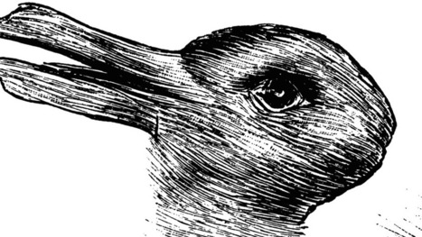 Animals Could Help Reveal Why Humans Fall For Illusions   Strange days indeed...   Scoop.it