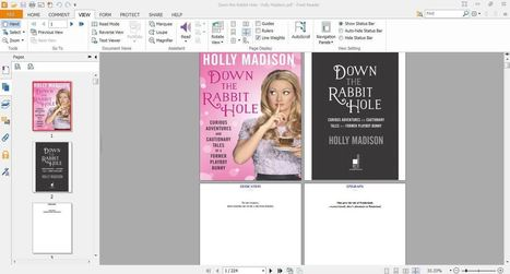Holly Madison Book Pdf