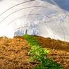 Agricoltura 2.0