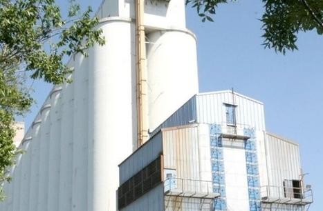 Monfalcone, il grano per celiaci sbarca alla De Franceschi  - Cronaca - Il Piccolo | senza glutine | Scoop.it