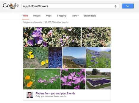 Google Brings Photos from Google+ to the Search Bar - SocialTimes | All things Google+ | Scoop.it