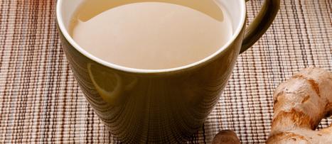 Ginger & Lemon Balm for Radiation Exposure | NutritionFacts.org | Plant Based Nutrition | Scoop.it