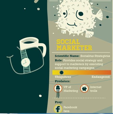 The Startup Ecosystem: Predator vs.Prey Infographic | Data Visualization for Social Media | Scoop.it