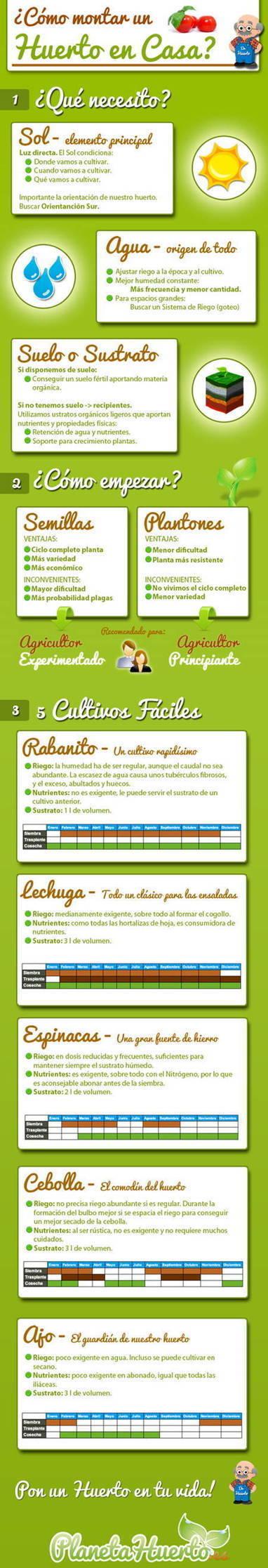 Jardineras para huerto en casa / EcoInventos.com | Ecología sostenible | Scoop.it