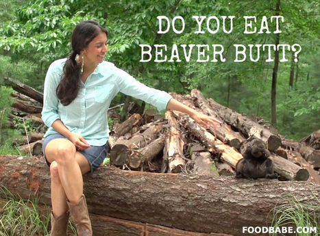 FOOD BABE TV: Do You Eat Beaver Butt? | Family issues | Scoop.it