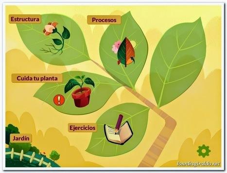 Las plantas en Realidad Aumentada con Arloon Plants - PROYECTO #GUAPPIS | Realidad aumentada en Educación | Scoop.it